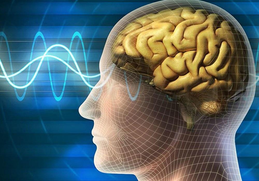 فرکانس سیگنالهای مغز ایرانی ها استخراج شد